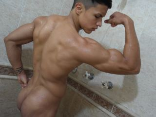Terceo_Muscle