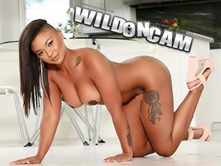 WildOnCam