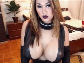 horsecockladyboy sex chat room